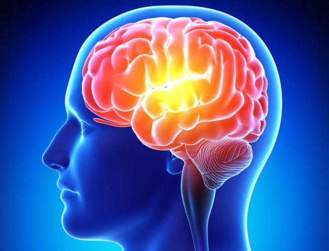 """Aperte le iscrizioni per il corso di """"Memory Training"""""""
