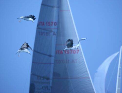 Settimana Internazionale di vela d'Altura: Day Two